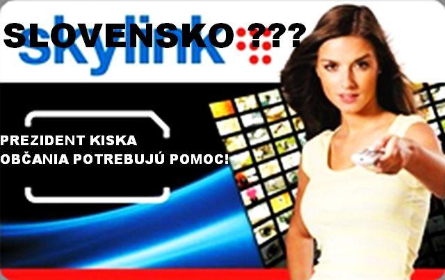 Skylinkvyp1